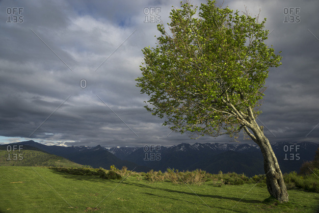 France, Ariege, view over Pyrenees Mountains from Signal de Chioula