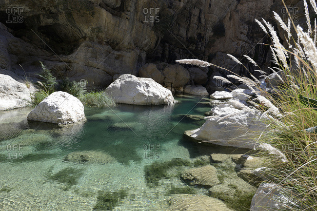 January 13, 2018: Oman, wadi Tiwi, green clear water of the wadi tiwi