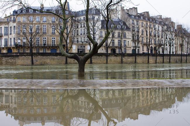 France, Paris, department 75, 4th arrondissement, ile Saint-Louis, drop in the water level of the Seine, February 2018.