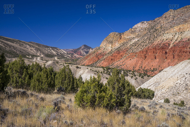USA,Utah , Sheep Creek Canyon