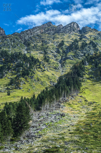 France, Pyrenees National Park, Occitanie region, Val d'Azun, tracks of an avalanche above the gave d'Arrens (name referring to torrential rivers, in the west side of the Pyrenees)