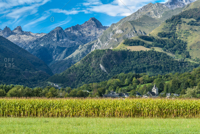 France, Pyrenees National Park, Occitanie region, Val d'Azun, mountains and cornfield in front of the Marsous hamlet