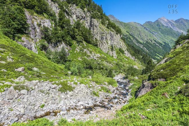 France, Pyrenees National Park, Occitanie region, Val d'Azun, Haute-vallee d'Estaing, torrent