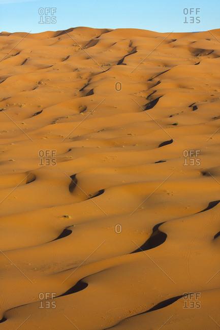 Dune desert in Merzouga, Morocco