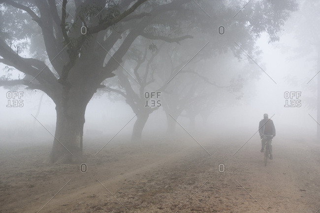 Man pedaling in the mist at the Lumbini site, Nepal