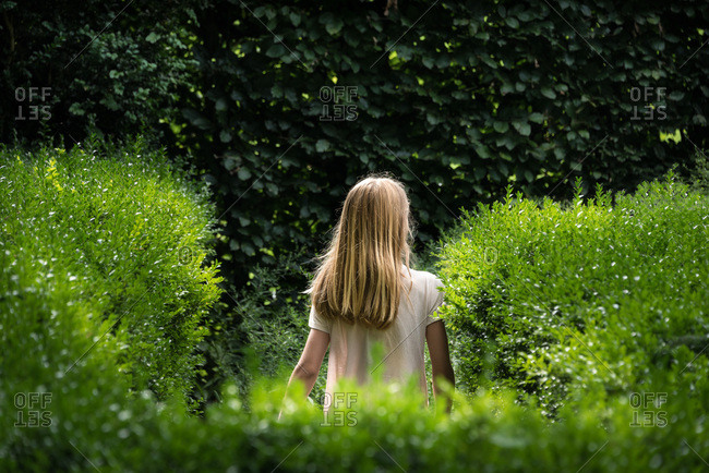 Back of a young girl with blond hair in a country garden