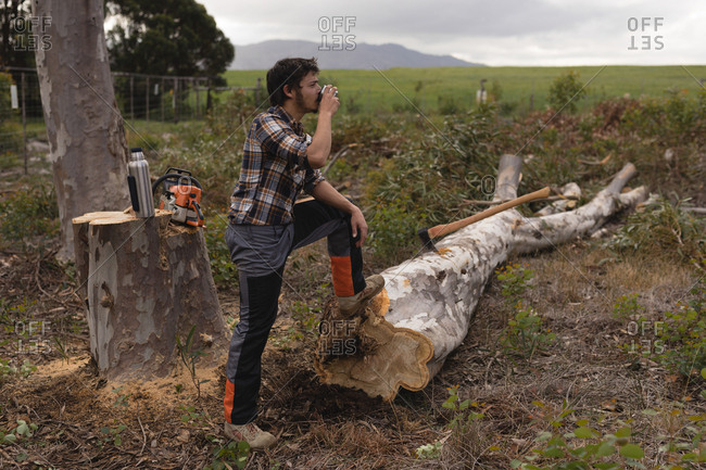 Lumberjack having a glass of water while cutting tree in the forest