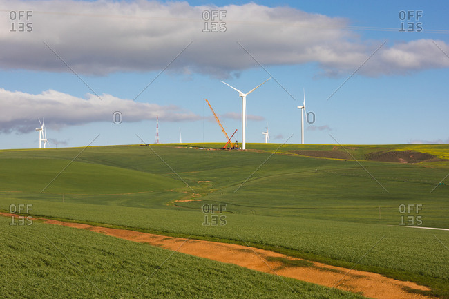 Windmill in green landscape on a sunny day