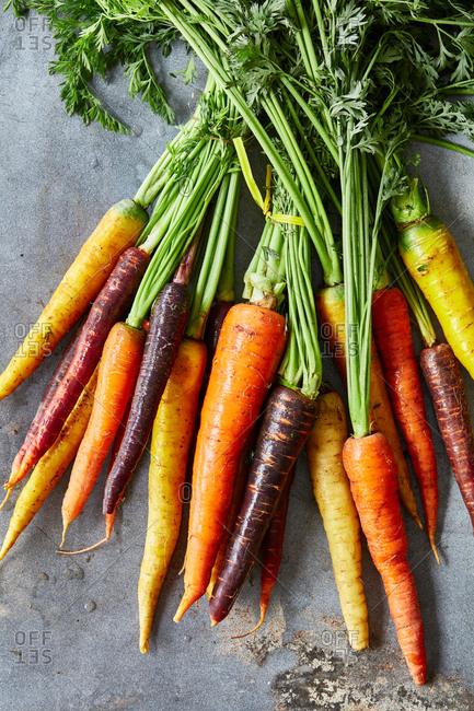 Rainbow carrot bunch