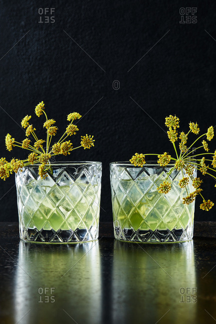Fennel infusion cocktail
