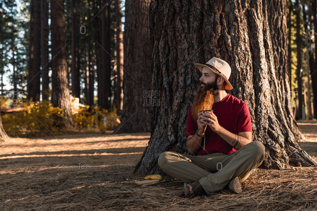Pensive adult traveler sitting under tree with legs crossed holding mug of hot tea, Lake Tahoe