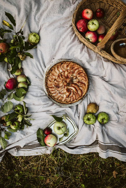 Overhead view of an apple galette in an orchard