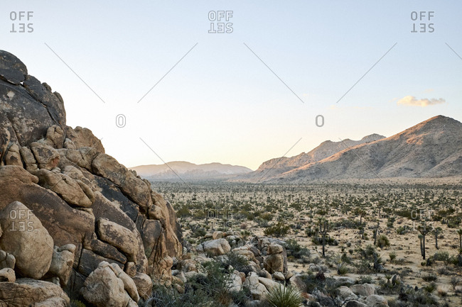 Desert landscape of Joshua Tree National Park, California
