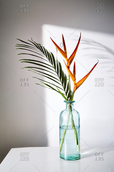 Tropical flowers and leaves in blue vase