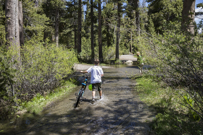 June 25, 2017: Rear view of boy in t-shirt pushing bicycle through flooded forest, Eastern Sierras, Mammoth Lakes, California, USA