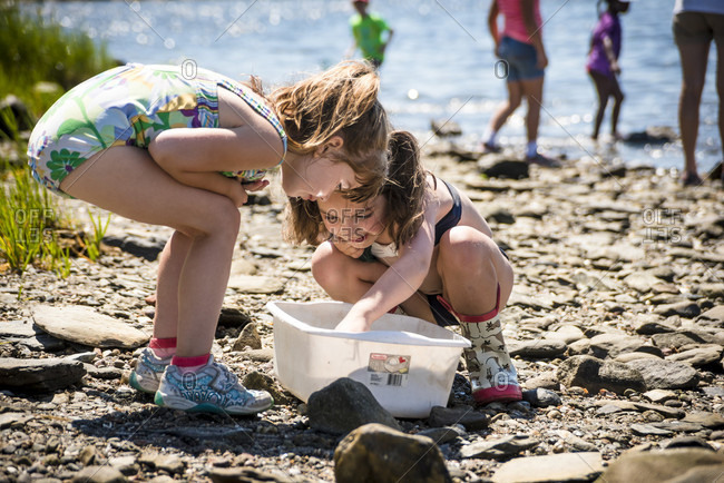 August 18, 2016: Children learning about coastal environments as part of an outdoor education program with the Audubon Society, Bristol, Rhode Island, USA