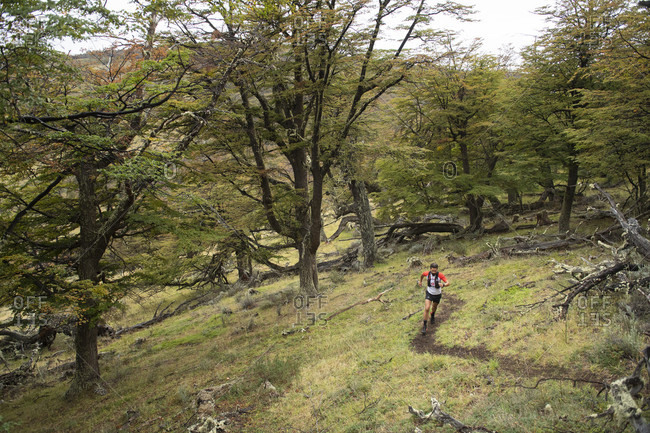 April 9, 2017: Distant view shot of man trail running in natural setting in Torres del Paine National Park, Magallanes region, Chile