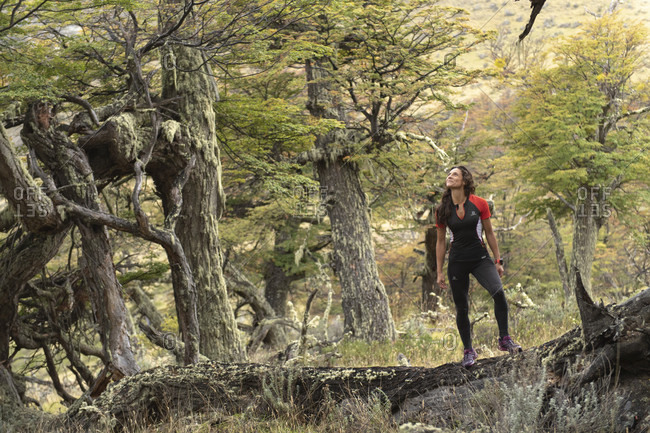April 9, 2017: Female trail runner in natural setting in Torres del Paine National Park, Magallanes region, Chile