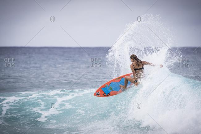 November 7, 2017: Rear view of single female surfer in bikini riding wave in sea