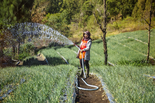 September 22, 2017: Female farmer watering plantation with hose, Bali, Indonesia