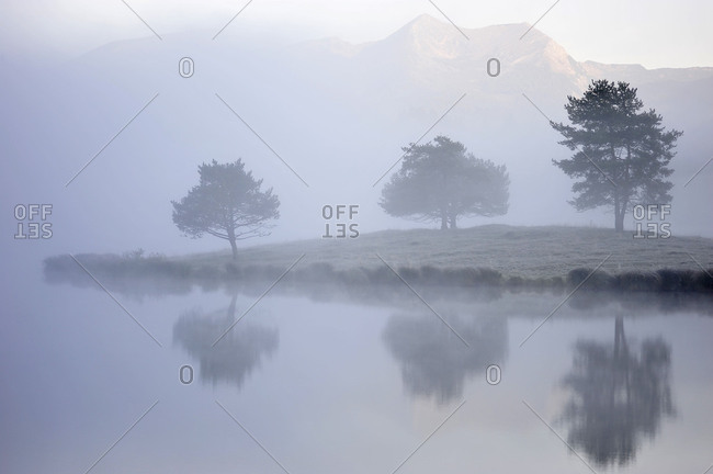 Three trees are reflected in the water of the Schmalensee (lake), while the fog admits a view at the mountains.