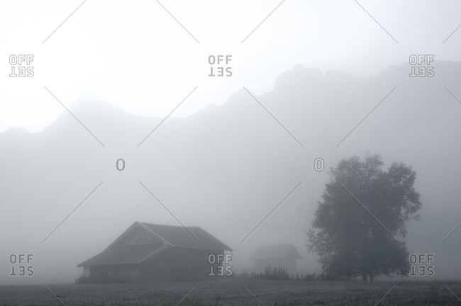 Woodsheds and tree in the fog, in the background the Karwendel