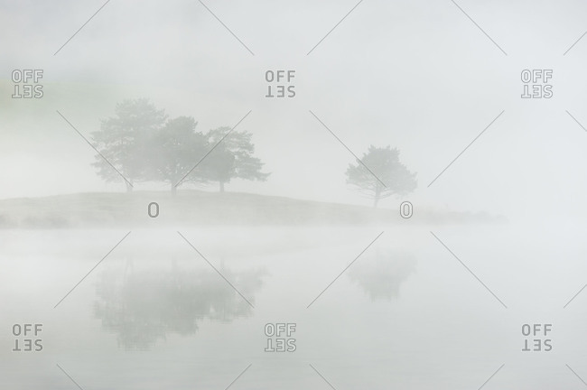 Mirroring of some trees on a headland in the water of a small foggy alpine lake close to Mittenwald.