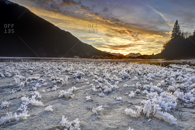 Spectacular sundown in the Isar meadows near Wallgau. In the foreground fine ice structures, in the background one recognises in the distance Wetterstein Range with Zugspitze.