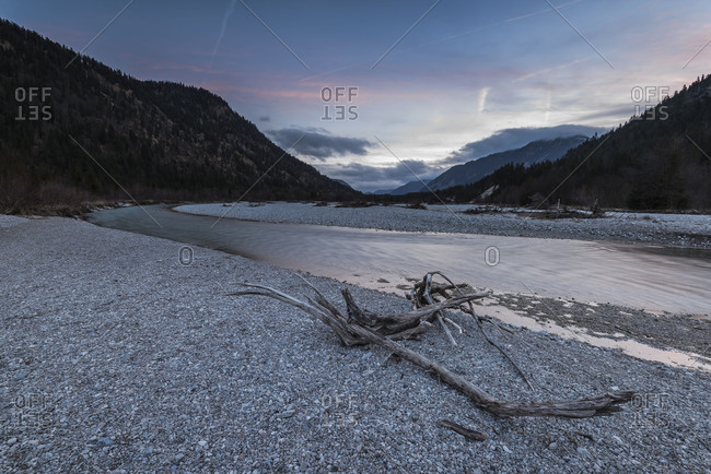 driftwood root on the Isar in the Engtal (valley), in the background mountains and sundown.