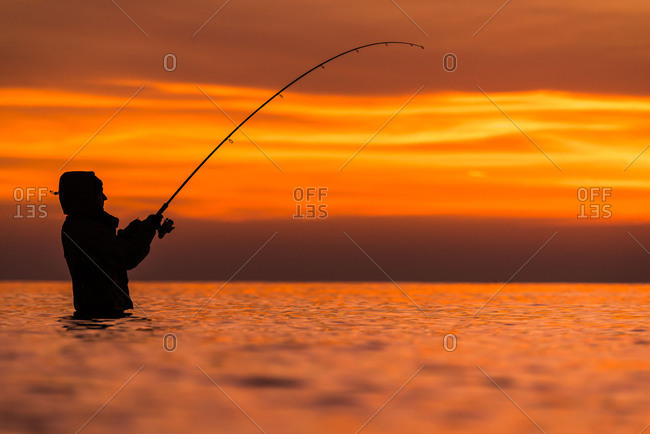 Angler rolls a sea trout during sundown. For fishing she stands with a chest wader in the cold water of the sea. By the low perspective is in the foreground a blur.