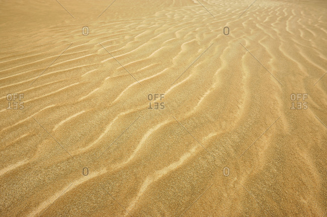 Sand structures in the Ninety Mile Beach in New Zealand