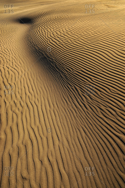 sinuous form of a dune in desert like scenery of the Farewell Split, New Zealand.