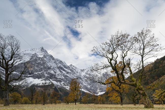 Autumnal Ahornboden