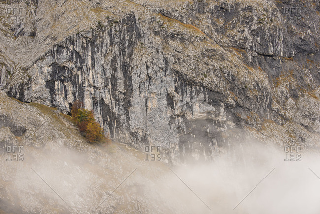 Autumnal trees in steep rock face, fog racks  through the valley.