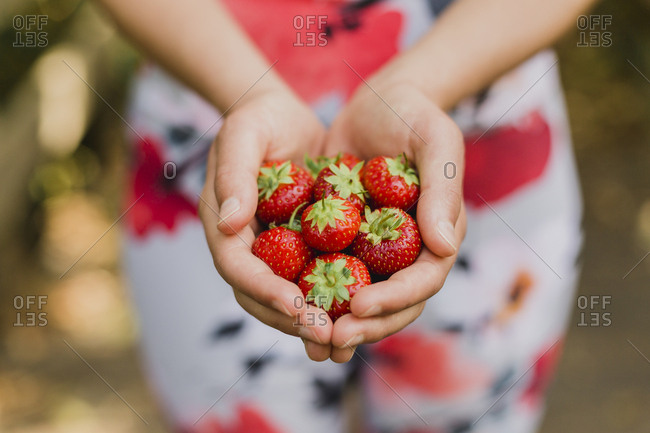Young woman holding handful of strawberries