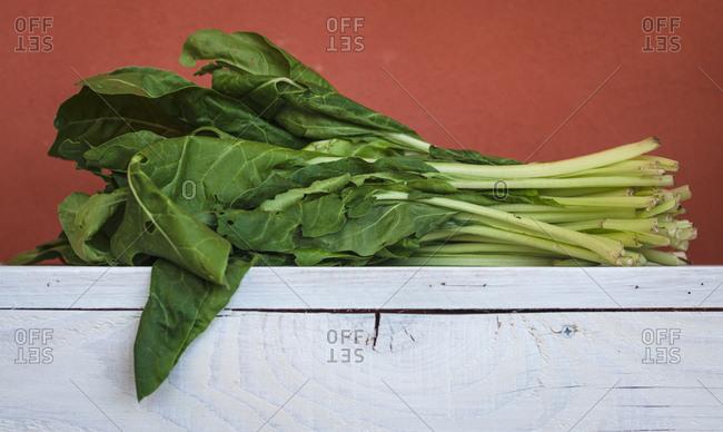 Fresh leaf spinach