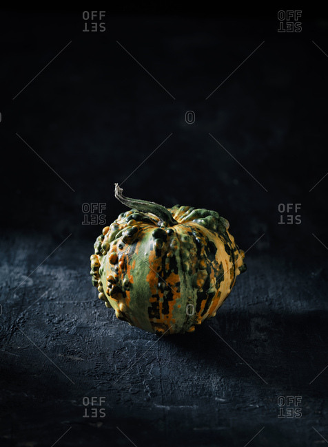 Tiny decorative gourd in front of dark background
