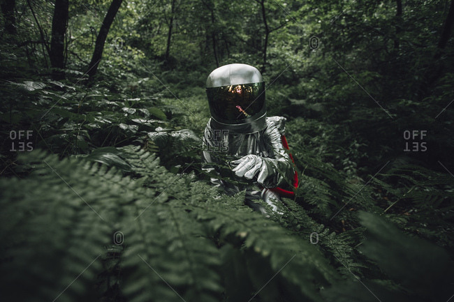 Spaceman exploring nature- examining plants in forest