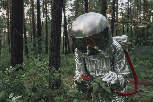 Spaceman exploring nature- examining plants