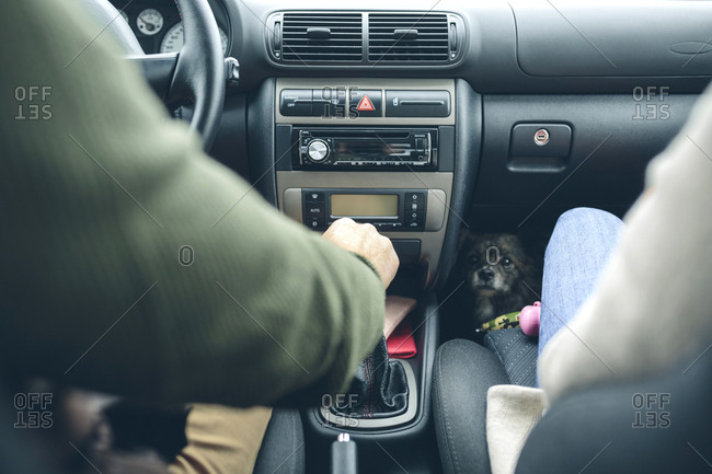 Couple in car with small dog looking at camera