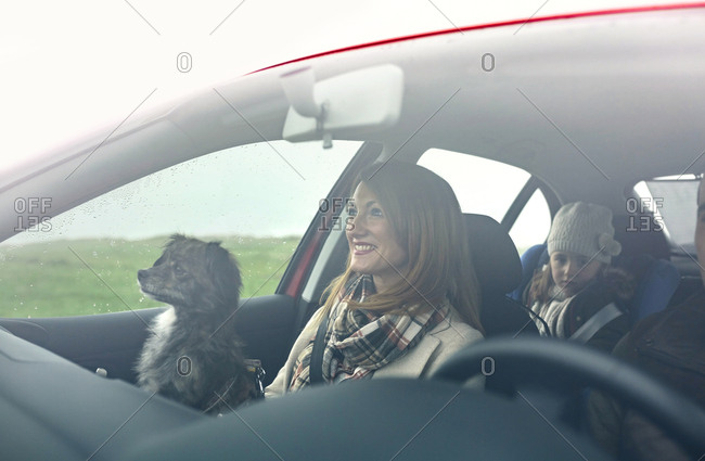 Happy family with small dog in car