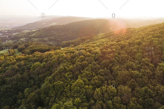 Austria- Lower Austria- Vienna Woods- Biosphere Reserve Vienna Woods- Aerial view of forest at sunrise