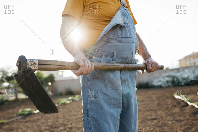 Senior man in denim holding shabby hoe tool and standing on cultivated land