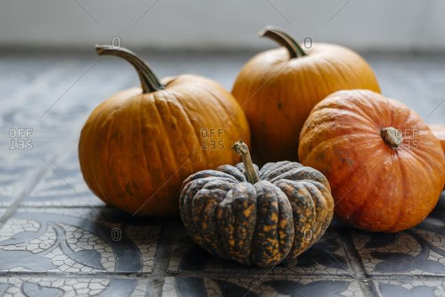 Various colorful autumn pumpkins as home decoration.