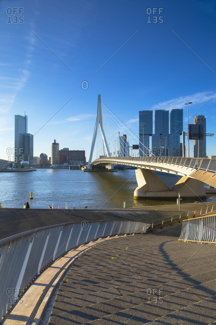 Erasmus Bridge (Erasmusbrug), Rotterdam, Zuid Holland, Netherlands