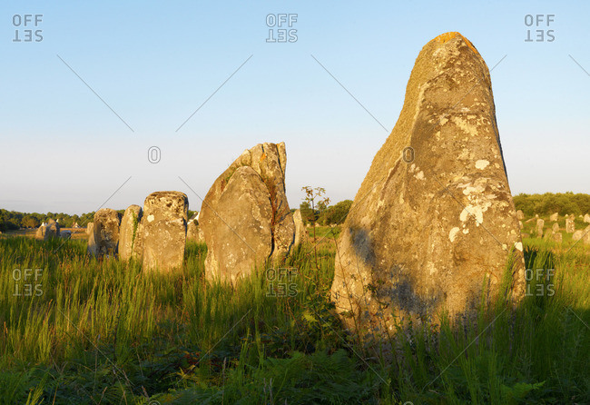 France, Brittany, Morbihan, Carnac, megalithic menhir alignments of Menec