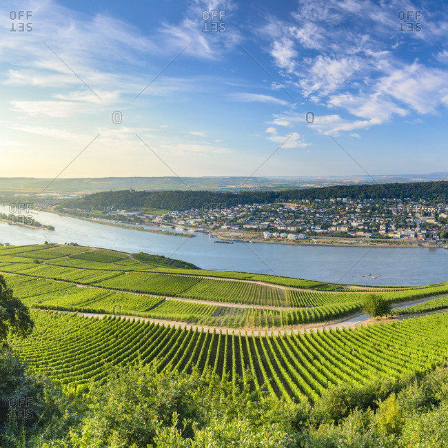View of Bingen, vineyards and River Rhine, Rudesheim, Rhineland-Palatinate, Germany