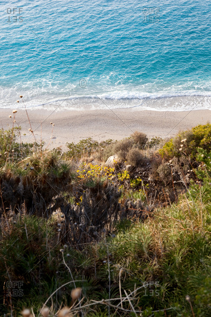 Scenic view of sandy beach from coastal bluff with natural vegetation