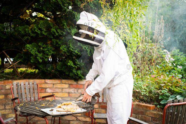 Beekeeper using smoker on bees surrounding freshly harvested honeycomb