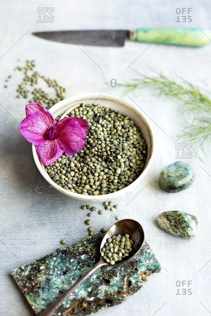 Green Lentil Salad Ingredients. Photographed on a light blue background.